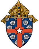 Archdiocese of houston